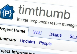 Serious vulnerability in TimThumb. Attention site owners on wordpress!